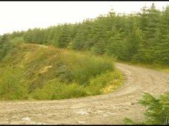 Занос на лесной дороге