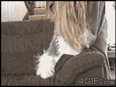 Электростатическая собачка