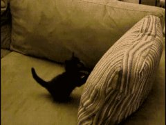 Задавил себя подушкой