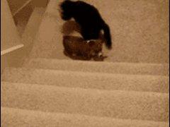 Взбирание по лестнице боком