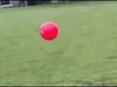Отлетел от шара