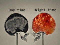 Мозги днем и ночью