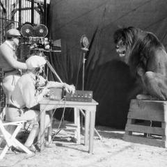 Съёмки льва для Metro-Goldwyn-Mayer, 1929 год